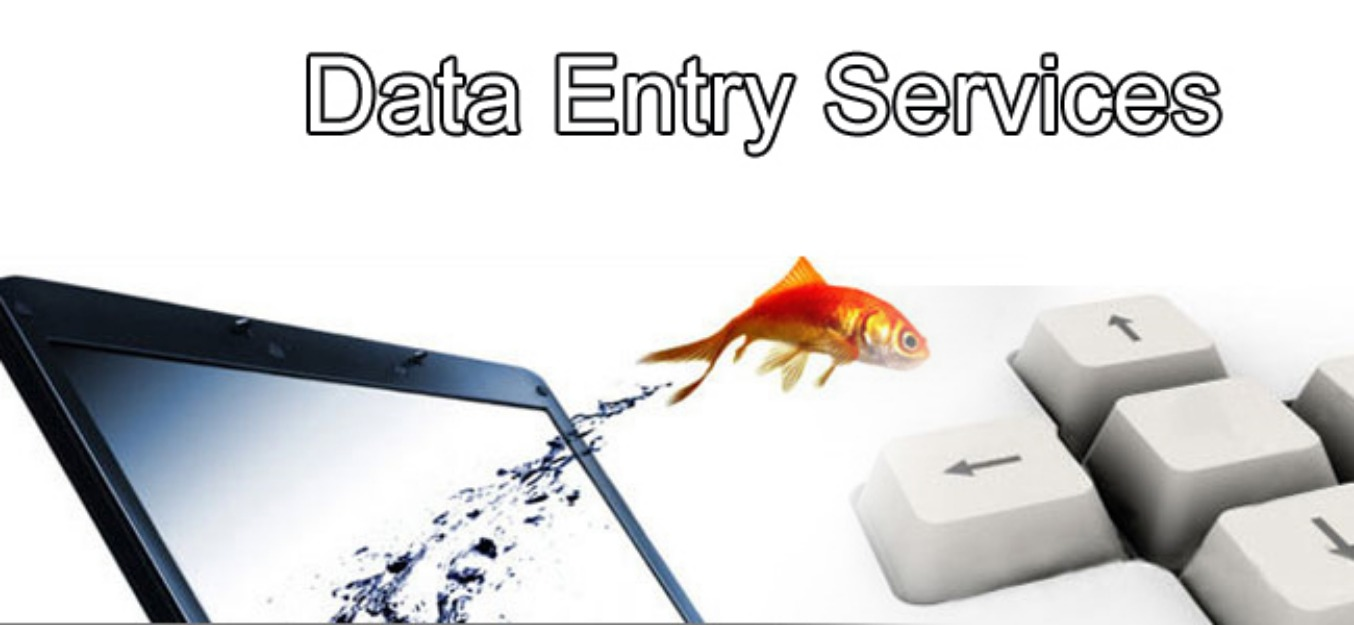 do accurate data entry by royal desinger