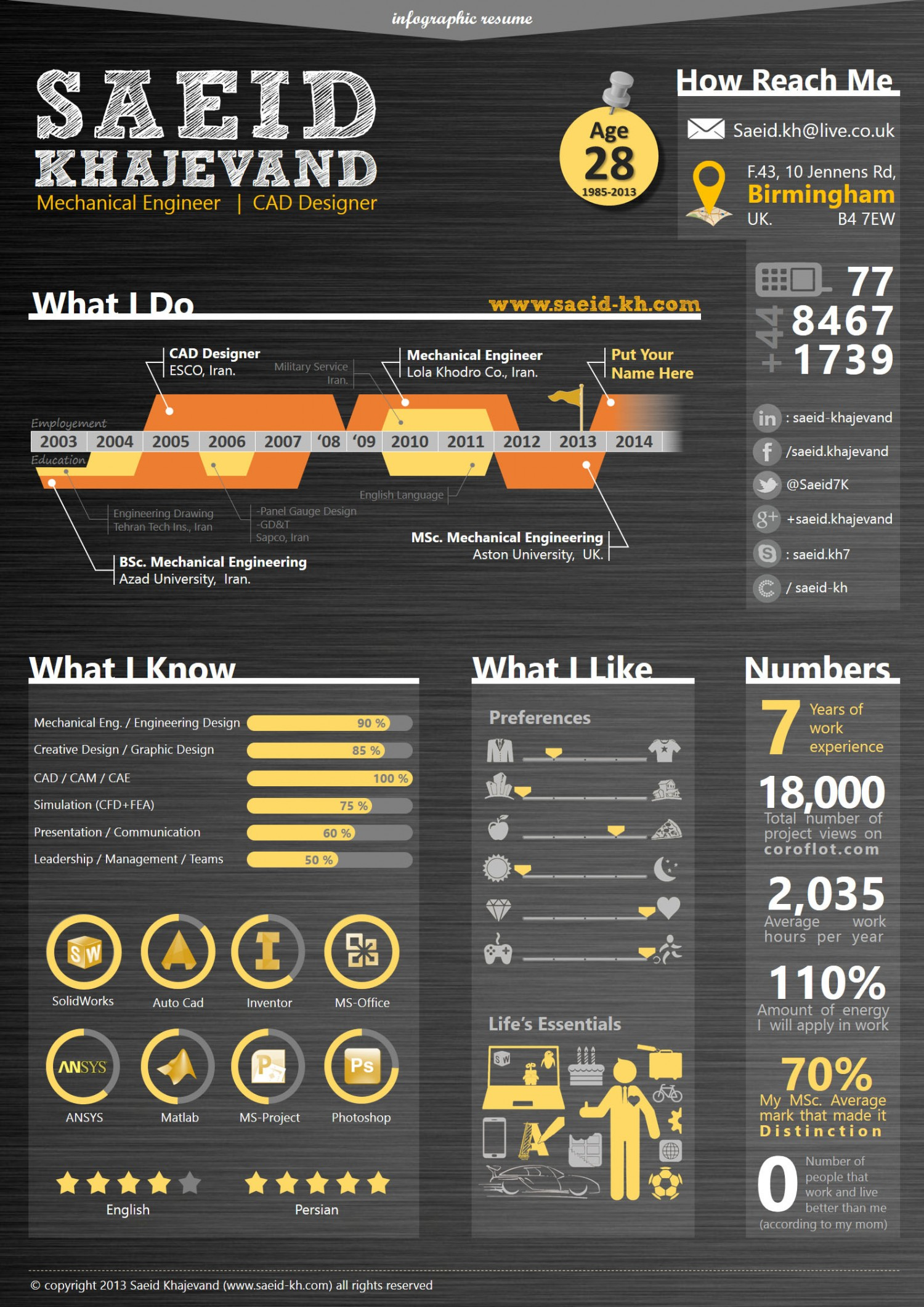 Create a catchy stunning infographic resume cv by Settlingcrab
