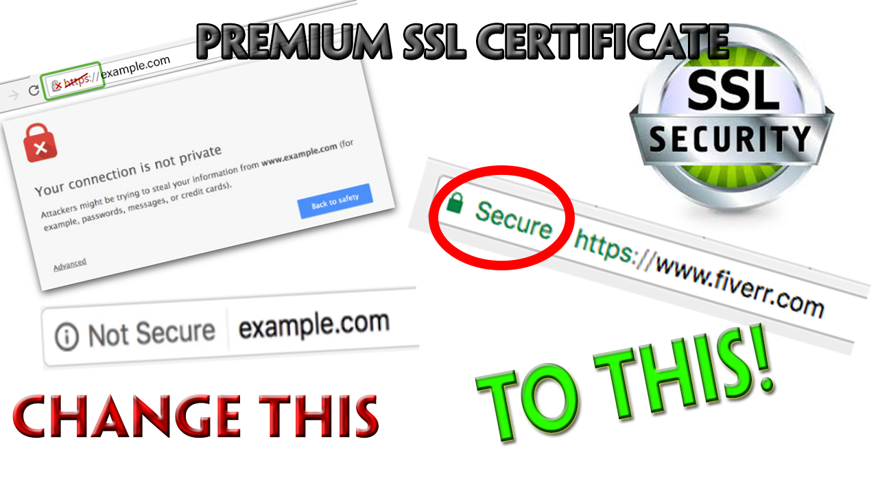 Provide Ssl Padlock Certificate To Secure Your Website By Leakcentral